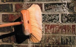 Как удалить высолы на кирпичной кладке