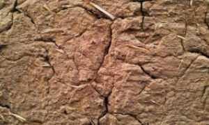 Как оштукатурить глиняную стену